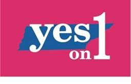 yes on 1 lcms resolution